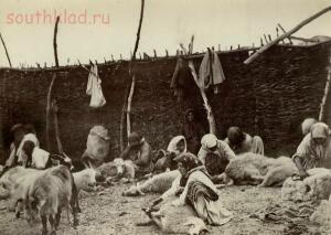 Фотоальбом Донское казачество в 1875-1876 г.г.  - 14.jpg
