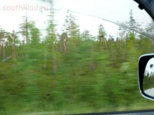 ОНИ летят за нами со скоростью 60 км в час...Приглядитесь к темным точкам на фото...это - оводы.Они летят за машиной со скоростью 60 км час. Это за нами они летят...у кого гусеницы, у кого - бабочки, а у нас сезон оводов...жуть... - оводы.jpg