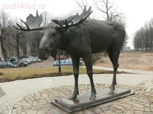 Символ Тильзита-Советск,Тильзитский лось. - 20273535.jpg