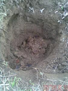 А поедем-ка Мы покопаем ... 2013 год  - Фото013.jpg