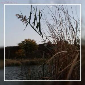 Рыболовный сезон 2016 - 1476036320635.jpg