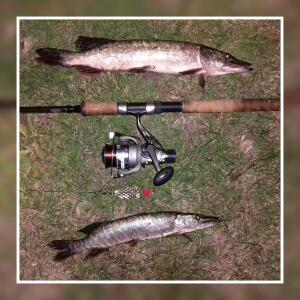 Рыболовный сезон 2016 - 1476032161066.jpg