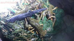 Рыболовный сезон 2016 - N99OIybP2CU.jpg