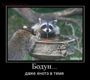 Картинки и прочее - 1264580050_041.jpg