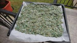 А поедем-ка Мы покопаем ... 2017 год  - 6500-ottoman-coins-found-with-a-Detech-Relic-Striker-metal-detector-12-1030x580.jpg