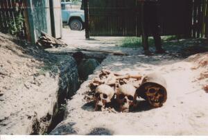 Пропавшие солдаты вермахта - Тарасовка 2002.jpg