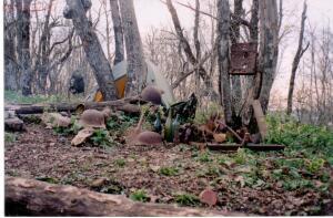 Пропавшие солдаты вермахта - 2004г. железо в лесу.jpg