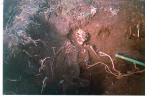 Пропавшие солдаты вермахта - Перебойный 3.jpg