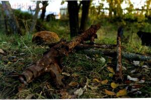 Пропавшие солдаты вермахта - Погостье Лен. обл. 2008.jpg