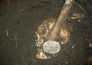 Пропавшие солдаты вермахта - 2336283.jpg
