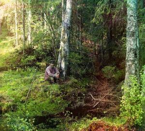 Фотографии русской деревни С.М. Прокудин-Горского 1909-1916 годов - 11089v.jpg