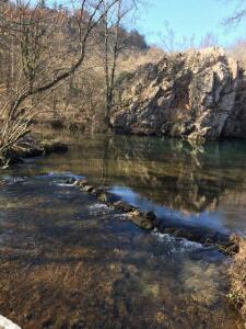 Запруда на реке Черной - IMG_3201.JPG