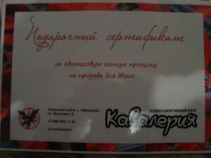 День открытых дверей в КСК Кавалерия для ЮГ Клад - DSC00960.JPG
