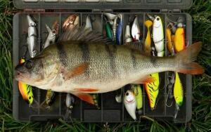 Рыбалка от Сереги ... - hl0VN8TwjUQ.jpg