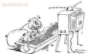 Пусть говорят надонышке Диана Шурыгина - govno_iz_televizora_ogovne.ru_5.jpg