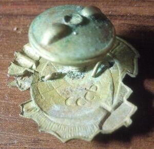 Знак ОДВФ СКК с родной закруткой - 6.jpg