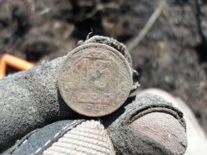 Отдыхающая лиса ... и 10 копеек 1921 года... - SAM_0379.JPG