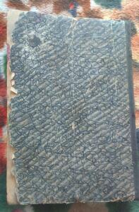 Книга 1928г Пчеловодное дело до 09.04.2017г в 22.00 - 2.JPG