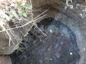 Подземные ходы под Каменском. - 20140526_194221.jpg