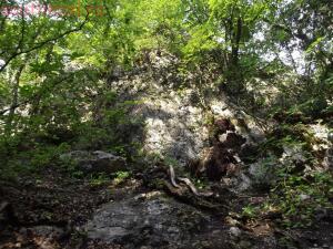 Тропами к Ванне Молодости ... или по Большому каньону Крыма - DSCF2113.jpg