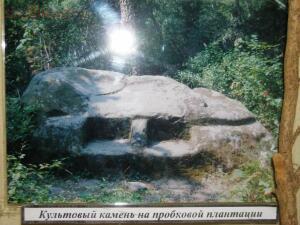 Хостинский музей. - DSCN2614.JPG