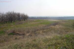 Фото прошлых лет- Немецкий лес в начале 90-х годов - Скосырская 3 я.jpg
