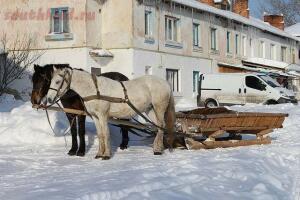 Сани - 640px-Horse-drawn_sleighs_2012_G1.jpg