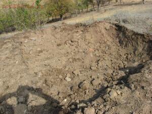 А поедим-ка мы покопаем. - IMG_0885.jpg