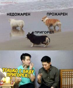 Анекдоты  - CRgWnCpbeJg.jpg