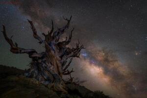Финалисты конкурса «Астрономический фотограф года» - 9.jpg