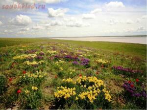 Интересные места Ростовской области - 24-qMnY8OJcTBo.jpg