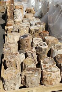Окемелости на выставке минералов в Дэнвере. - 10.jpg