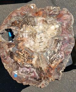 Окемелости на выставке минералов в Дэнвере. - 11.jpg