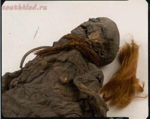 «Мертвецы из трясины». Откуда в европейских болотах тысячи зверски убитых людей - 5.jpg