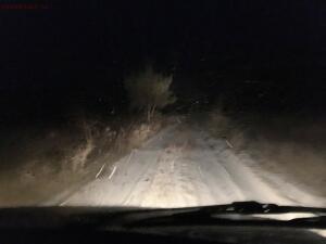 Только стали собираться домой, и пошел снег... - 2018_12_15_IMG_2532.JPG