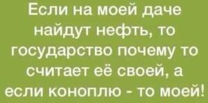 Житель Магадана добыл и пытался продать золото за 21 миллион рублей - 1547794036123444368.jpg