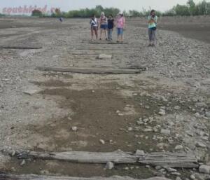 Волга обмелела до древней булыжной мостовой - 155783991713791613.jpg