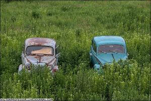 Кладбище автомобилей - kladavtomm22.jpg
