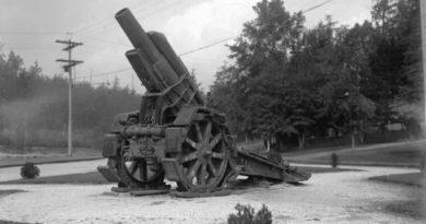 Артиллерия Первой мировой войны: экскурс в историю