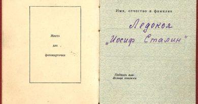 Орденская книжка Тип 10
