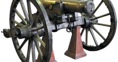 Характеристики орудий системы 1805 года