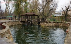 Парк отдыха Лога в Старой Станице - лога.jpg