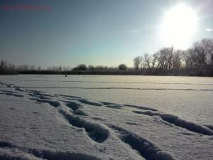 Зимняя рыбалка - 20161031003381.jpg
