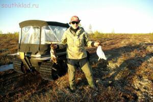 Осенняя охота - SG100393.JPG