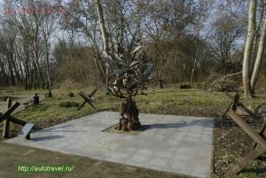 дерево мира - приморск 9.jpg