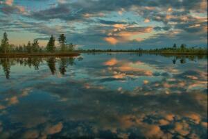Васюганские болота - 85b6d2714eae3e4de5c1d862d91157c6.jpg
