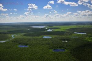 Васюганские болота - 83be3c05f7fdaa3ff19fa883d642d853.jpg