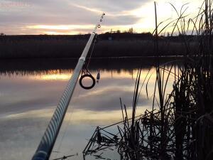 Рыболовный сезон 2016 - 20161106_165023.jpg