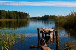 Интересные, красивые места для рыбалки и отдыха. - место...jpg