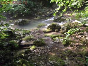 Тропами к Ванне Молодости ... или по Большому каньону Крыма - DSCF2065.jpg